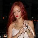 Rihanna Sports Long Red Locks In NYC