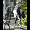 It's A Dog Day Afternoon For Melanie Griffith