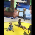 "<em><span class=""exclusive"">EXCLUSIVE PHOTOS</span></em> - Angelina Jolie Takes Her Brood For A Bounce!"