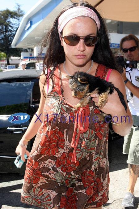 Britney Spears BSPEARSBEACH071807_019.jpg