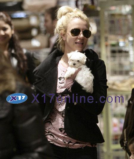 Britney Spears BSPEARSDOG120907_17.jpg