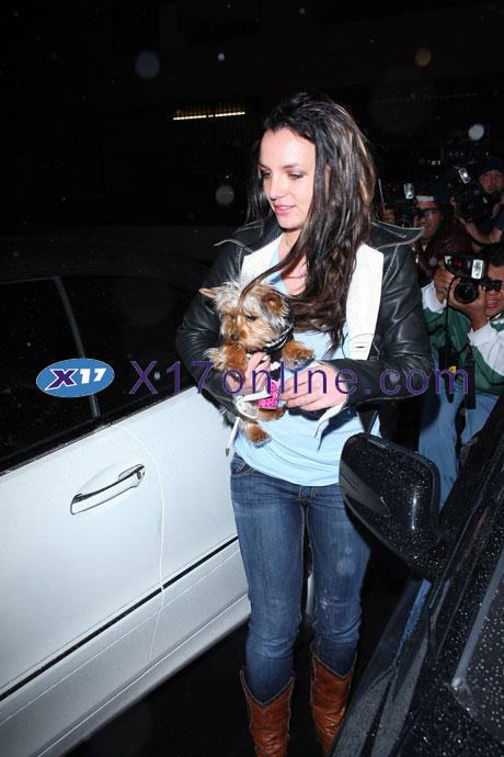Britney Spears BSPEARSSISTER1218_3.jpg
