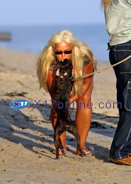 Dog Chapman DogChapman0901_07_X17.jpg