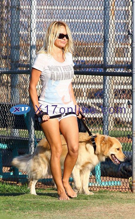 Pamela Anderson PAnderson092908_12_X17.jpg