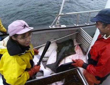 palinfishing1.jpg