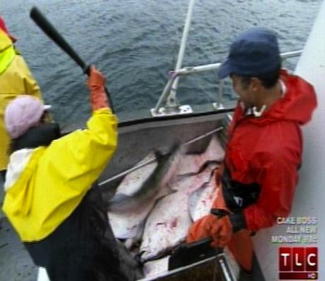palinfishing2.jpg