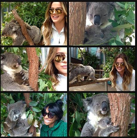Khloe_kardashian_koala_112213.jpg