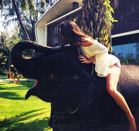 kendall-elephant-bikini.jpg