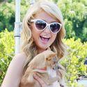 Paris Hilton Is A Princess In Peach