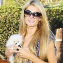 "Paris Hilton Is Crowned ""The World's Most Beautiful International Superstar"" By Our Videographer"