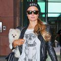 Paris Hilton Does Her Errands Doggy Style