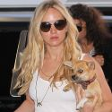 A Makeup-Free Jennifer Lawrence And Her Adorable Pooch Catch A Flight Out Of Town
