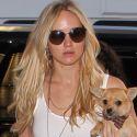 Jennifer Lawrence And Chris Martin Split AGAIN, She Runs Back To Ex Nicholas Hoult