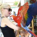 Gwen Stefani Bribes Her Boys With Birds